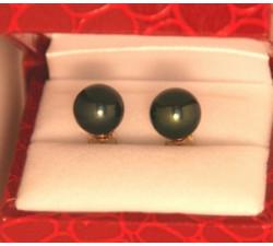 Boucles d`Oreilles Perles de Tahiti 9.5mm Qualité Perle: AAA